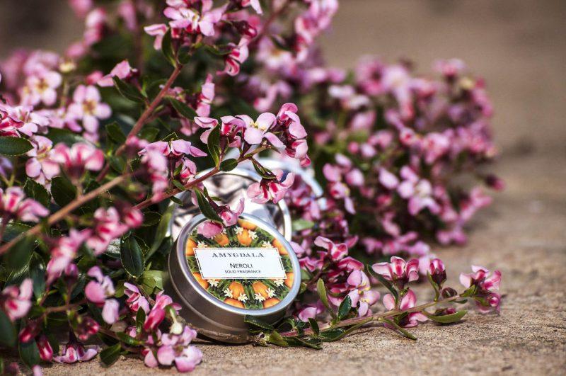 Amygdala Solid Perfumes